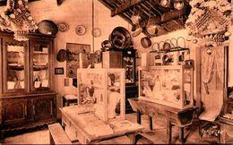 La Petite Salle Du Musée De Bise-Dur, à CROIX-de-VIE - Francia