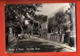 MIR-11 Marina Di Massa Via Delle Pinete. Viag. In 1959 - Massa