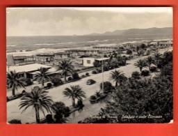 MIR-12 Marina Di Massa Spiaggia E Viale Litoraneo. Viag. In 1959 - Massa