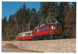 Train // Chemin De Fer Nyon-St.Cergues-Morez - Trains