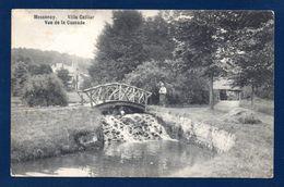 Messancy. Villa Callier. Vue De La Cascade. ( H. Callier Et M. Laurent- 1896). Lieu Dit Im Muhlendrich. 1910 - Messancy