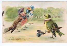 Oiseaux Humanisés , Illustrateur Brasel (?) : Promenade Dans Un Parc - Birds