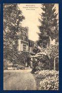 Messancy. Château Muller- Tesch ( Le Castel, Victor Tesch - 1896).Entrée Principale - Messancy