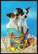 Chiens - Dogs - Hunden - Circulé Sous Enveloppe - Circulated Under Cover - Gelaufen U. Umschlag - Chiens