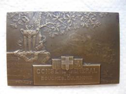 Médaille CONSEIL GENERAL DES BOUCHES DU RHONE, Par G. MARTIN - France
