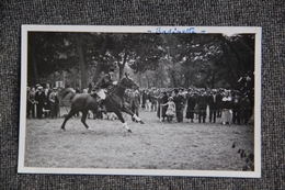 Equitation : Cavalier - Cartes Postales