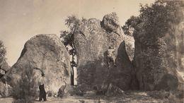 Photo à Fontainebleau Escalade  Des Drei Zinnen - Photos