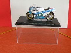 MOTO 1/24 > Yamaha TZ250L Christian Sarron 1984 (sous Vitrine) - Motos