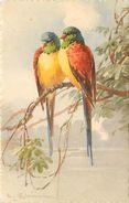 KLEIN Catharina  -  Couple D'Oiseaux .(perroquets) - Klein, Catharina