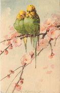 KLEIN Catharina  -  Couple D'Oiseaux .(perroquets), Carte Vendue En L'état. - Klein, Catharina