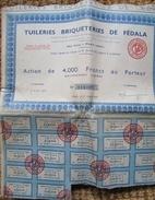 Tuileries Briqueteries De Fedala Maroc  Lot 10 Actions Avec Coupons - Aandelen