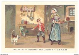 Chromo : Les Animaux Utilisés Par L'homme : Le Chat - Autres