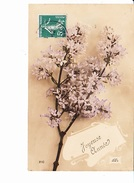 JOYEUSE ANNEE, Branche Fleurie, Ed. J.C. 1912 - Nouvel An