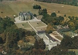 CHAOURCE Vue Aerienne Chateau De La Cordeliere 403D - Chaource
