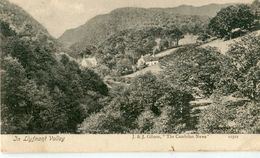 UNITED KINGDOM / ROYAUME - UNI - In Llyfnant Valley - Montgomeryshire