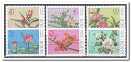 Macau 1983, Postfris MNH, Flowers - 1999-... Speciale Bestuurlijke Regio Van China