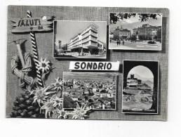 SALUTI DA SONDRIO VEDUTE   VIAGGIATA  FG - Sondrio
