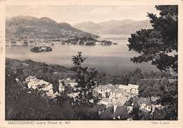 Cartolina Magognino Sopra Stresa Panorama 1951 - Verbania