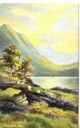 ARTIST - DINAS LAKE Art374 - Merionethshire