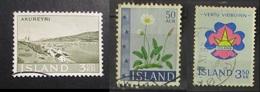 Islanda 1963 Akureyri 1964 Flowers Vertu Vidbuinn Used - 1944-... Republik