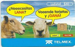 Mexico - Ladatel - Sheeps Talking - P-1234C - 30$, 01.2004, Used - Messico