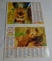 Almanach Du Facteur De 1994 Département Du Morbihan (56) - Calendriers