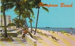 Florida Pompano Beach Tropical Beach Scene