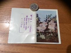 """Calendrier 1962 """" Oisillon (oiseau)» - Calendriers"""