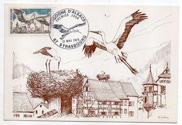 1973-Carte Maximum--Cigogne D'Alsace --  Signée H.Sainton --cachet STRASBOURG - 67 - Cartes-Maximum