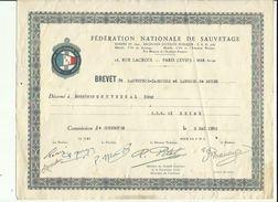 BREVET  F N S  A PARIS  De Sauveteur-Canotier Et Lanceur De Bouée Decerné A Mr GOUVERNAL Remy CRS A REIMS 1952 - Swimming