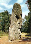 Carnac Menhir CPM Ou CPSM - Carnac