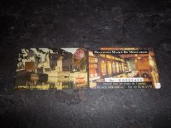ANCIENNE CARTE A PUCE CEV / CARTAPLUS VILLE : MONTARGIS VERSO PRALISNES MAZET T.B.E !!! - Carta Di Fedeltà E Regalo