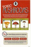 2012 Ghana  Toxic Mushrooms Fungi Poison    2 Souvenir Sheets  MNH - Toxic Plants