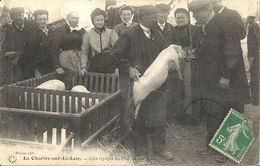 CPA La Chartre-sur-le-Loir Coin Typique Du Marché Au Porcs - Altri Comuni