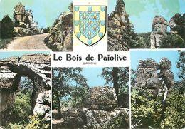 PIE 17-FL-8549 :  BOIS DE PAÏOLIVE. - France
