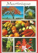 Martinique - Otros