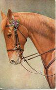 Carte Illustrée. Tête De Cheval. O.G.Z-L 144/942 - Pferde