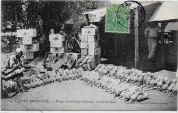 CPA Guinée Colis Postaux Poste Ananas Métier Circulé Type Ethnic - Guinée Française