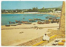 Hammamet - The Beach Seen From Cafe Sidi Bou Hadid, 1980 Postcard - Tunisia