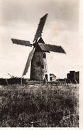 Carte Photo - Le Moulin A Vent De NOIREMOUTIER - Ile De Noirmoutier