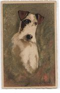 Illustration Signée  J. B.....( Indistinct ) -    Collection Chien -    Fox  Terrier - Chiens
