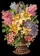 CHROMO DECOUPIS GRAND FORMAT - Corbeille Avec Des Orchidées, Lilas Et Autres Fleurs - 240x170 Mm - Fleurs