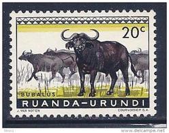 Ruanda-Urundi, Scott # 138 MNH Cape Buffalos, 1959 - 1948-61: Mint/hinged