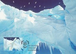 Australian Antarctic Territory 2009 Poles And Glaciers, Snow Petrels, Maximum Card - Maximum Cards