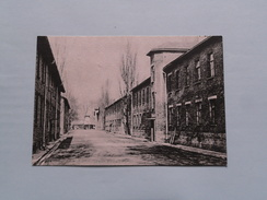 AUSCHWITZ A View Of A Street In The Camp ( Foto Wieslaw Kielar ) Anno 19?? ( Zie Foto Details ) !! - Otros