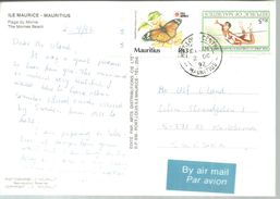 CARD MAURITUS 1992 - Papillons