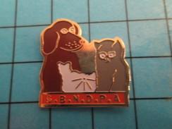 Pin513d Pin's Pins / Rare Et De Belle Qualité !! ANIMAUX / CHIEN CHAT SBNDPA PROTECTION DES ANIMAUX - Animaux