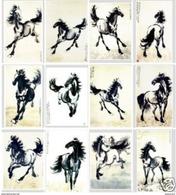 12  Postcards Of Horse Horses Animal , Postkarte Carte Postale - Chevaux