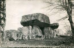 DOLMEN(MONTGUYON) - Dolmen & Menhirs