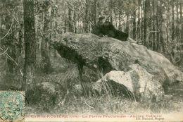 DOLMEN(SAINT CYR LA ROSIERE) - Dolmen & Menhirs